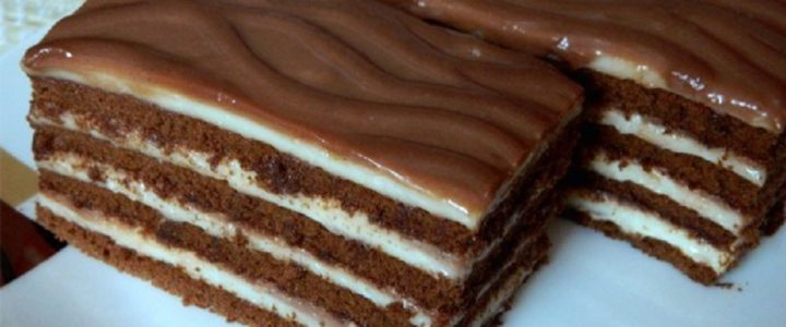 melts-in-your-mouth-no-bake-creamy-milk-slice-in-no-time