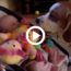 the-dog-steals-the-babys-toys-but-he-compensates-her-immediately-he-overwhelms-her-with-the-toys-he-finds